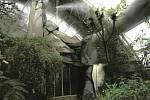 Botanická zahrada - proměna horské části skleníku Fata Morgana - skála.