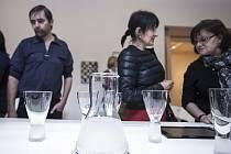 Výstavu Brilliant By Design představila Česká centra v Praze, nyní poputuje do Frankfurtu nad Mohanem