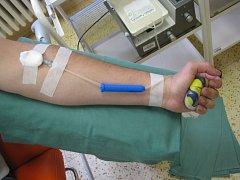 Darování krve. Ilustrační foto.