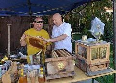 Hradčanské včely už pilně pracují