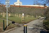 Nové sloupky zamezují neoprávněným vjezdům do parku na Petříně.
