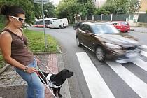 ÚKOL PŘECHOD: Pes neví, že má s pánem (paní) na přechodu přednost, je cvičen, že musí zastavit před ním. Dál se vydá až na pokyn pána a nesmí se nechat ničím rozptylovat, ani jiným psem ...
