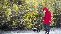 Žena na procházce se psem v zasněženém parku 6. dubna 2021 v Praze.