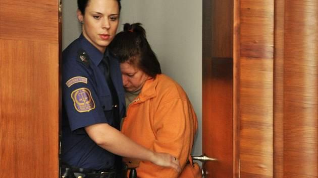 Za donucení nezletilé dcery k prostituci si matka odpyká pět let