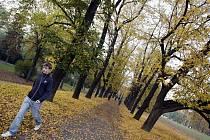 Podzimní Letenské sady v Praze.