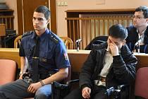 Před Městským soudem v Praze stanul ve čtvrtek 22letý Vietnamec, který loni 21. srpna zavraždil ve večerce v pražských Stodůlkách oba své rodiče, jejich těla odvezl do lesa na Rokycansku, polil benzinem a pálil, načež ostatky ještě rozjezdil autem.