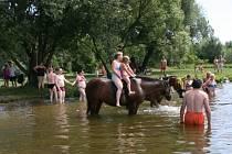 STUDENÁ NEBO TEPLÁ, to po vstupu do Vltavy asi nehraje roli. Možná tak pro otužilce, nicméně všem jde o zábavu.