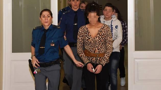 Za brutální vraždu seniora v Letňanech uložil Městský soud v Praze dívkám 15 a 7,5 roku vězení.