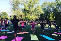 Jóga se cvičila zdarma v Malešickém parku už od května.