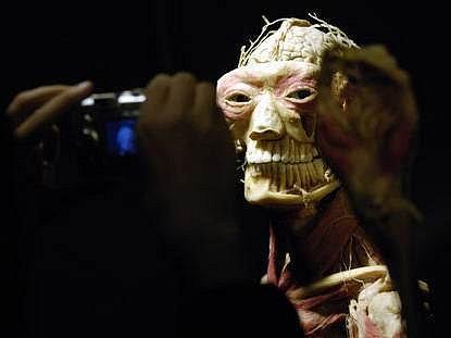 Anatomie nebo senzace? Na exponátech jsou vidět jednotlivé vrstvy těla, od kůže až po vnitřní orgány, což vzbuzuje protichůdné reakce návštěvníků.