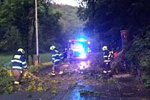Pražští hasiči měli s odstraňováním následků sobotní bouřky plné ruce práce.