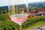 Víno z vinice sv.Kláry.
