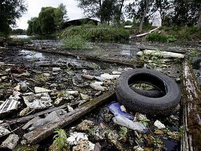 Podobně jako v Kyjském rybníce, vyskytl se 22. července vysoký úhyn ryb i v rybníce Kovářském v Šeberově u Prahy. Nemalou část viny na tom nese i fakt, že lidé si ze zadní části rybníka udělali skládku.