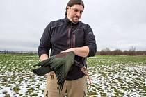 Antonín Vaidl z pražské zoologické zahrady ve středu 2. března 2016 dopoledne odchytili třetího z osmnácti ibisů skalních, kteří uletěli z voliéry v zahradě. Našli ho u obce Zápy poblíž Brandýsa nad Labem.