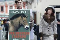 Zoo Praha zve na Výroční slavnost.