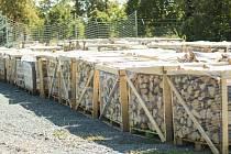 Lesy hlavního města Prahy zveřejnily seznam piknikových míst, kde se dá grilovat. Nabízí také dřevo na grilování i topnou sezonu.