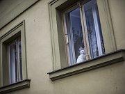 Lidé si užívali prázdnin 31. července v centru Prahy.