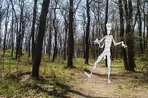 V Chuchelském háji na vás v pátek čeká stopovací hra Oživlá mumie.