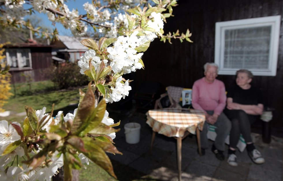 Zahrádkaři v Praze. Začalo jaro a práce na zahrádce jsou v plném proudu. Na snímku návštěva zahrádkářské kolonie Balkán v Praze 3.