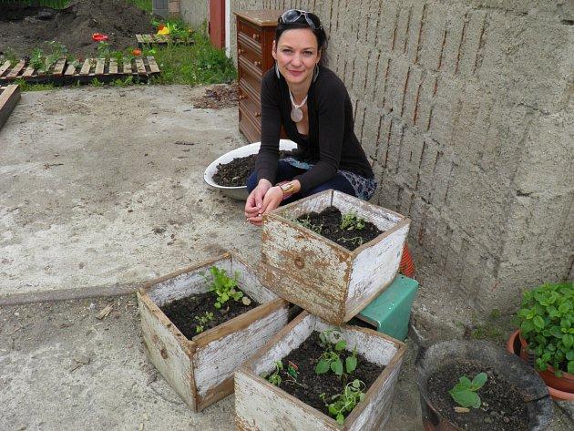 komunitní zahrady