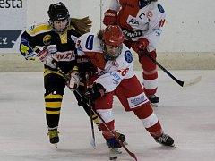 DOMINIKA FOREJTOVÁ (vpravo) v utkání proti Litvínovu.