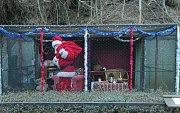 Představení vánoční expozice Santa Clausů v Zoo Praha.