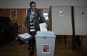 Prezidentské volby, 11. ledna 2013