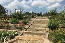 Pražská botanická zahrada i letos přináší cyklus online přednášek