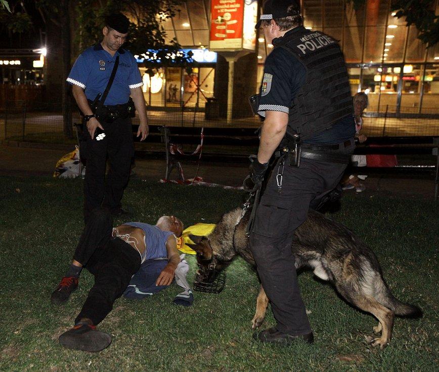 Městská policie při noční kontrole ve Vrchlického sadech, pověstném Sherwoodu u hlavního nádraží.
