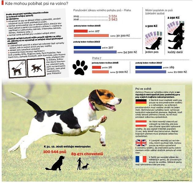 Pobíhání psů. Infografika.