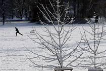 Stromovka. Ilustrativní foto.