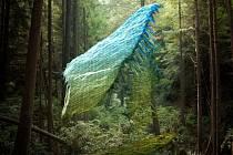 Fotografie od Marka Dorfa, jehož dílo budou moci návštěvníci festivalu shlédnout ve skleníku botanické zahrady na Albertově