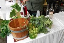 Užijte si letňanské vinobraní.
