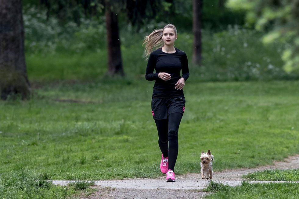 Venčení psů v pražské Stromovce 23. května.