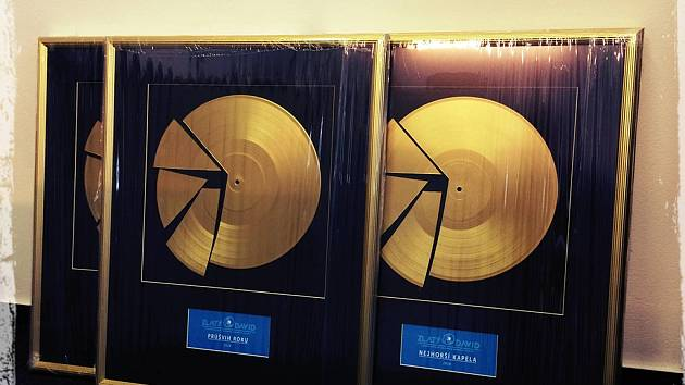 Cena Zlatý David.