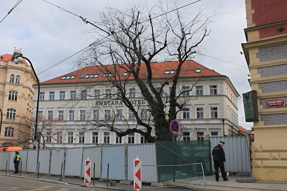 Anenský trojúhelník. Vzrostlý javor, který chce městská část Praha 1 pokácet, hlídá policie.