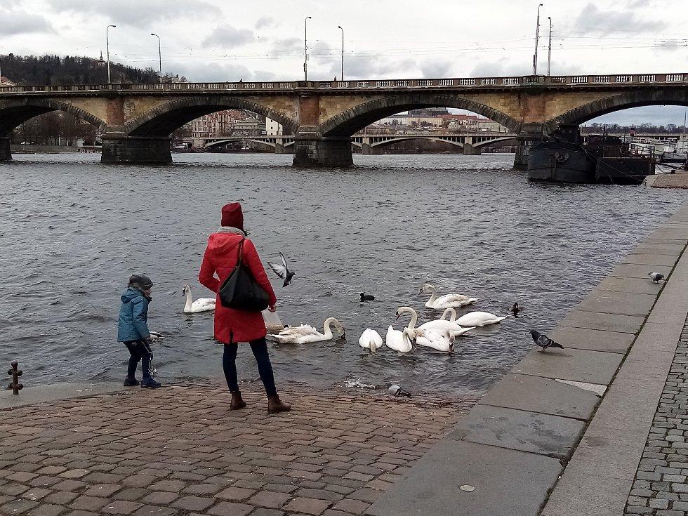 Pražské náplavky jsou nyní pod kontrolou městské policie a takzvaných anticovid hlídek.
