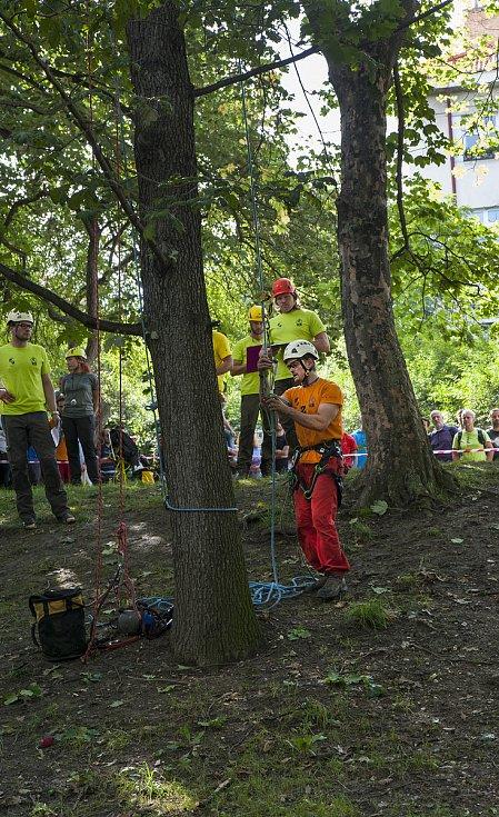 Mistrovství ve stromolezectví v parku Jezerka