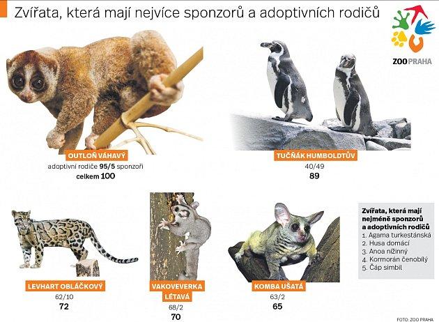 Adopce zvířat vZoo Praha. Infografika.