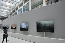 Návštěvníci Národní galerie mohou vidět od 15. července ve Veletržním paláci v pražských Holešovicích výběr z milionu snímků, které autor pořídil z okna svého domu během uplynulých dvou let.
