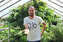 Zahradník Vít Janouš má v Horních Počernicích hotovou džungli.
