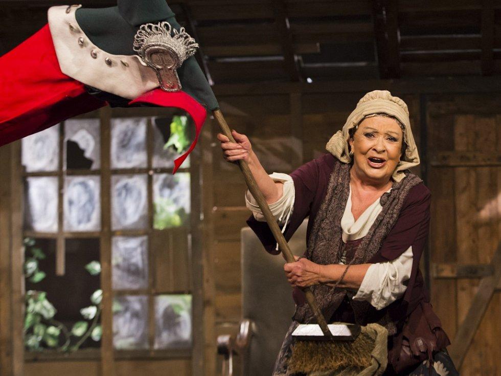 Hra Divadla Na Jezerce Generálka, v hlavní roli s Jiřinou Bohdalovou a Radkem Holubem.