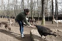 Zookoutek Malá Chuchle je zřízen u hájovny v Chuchelském háji v Malé Chuchli v Praze.