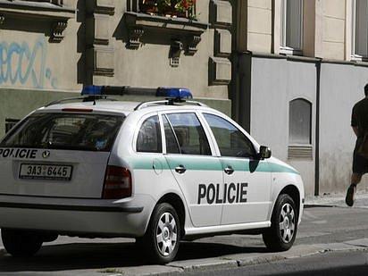 POLICISTÉ JEDNALI RYCHLE a násilníka zadrželi ještě téhož dne./Ilustrační foto