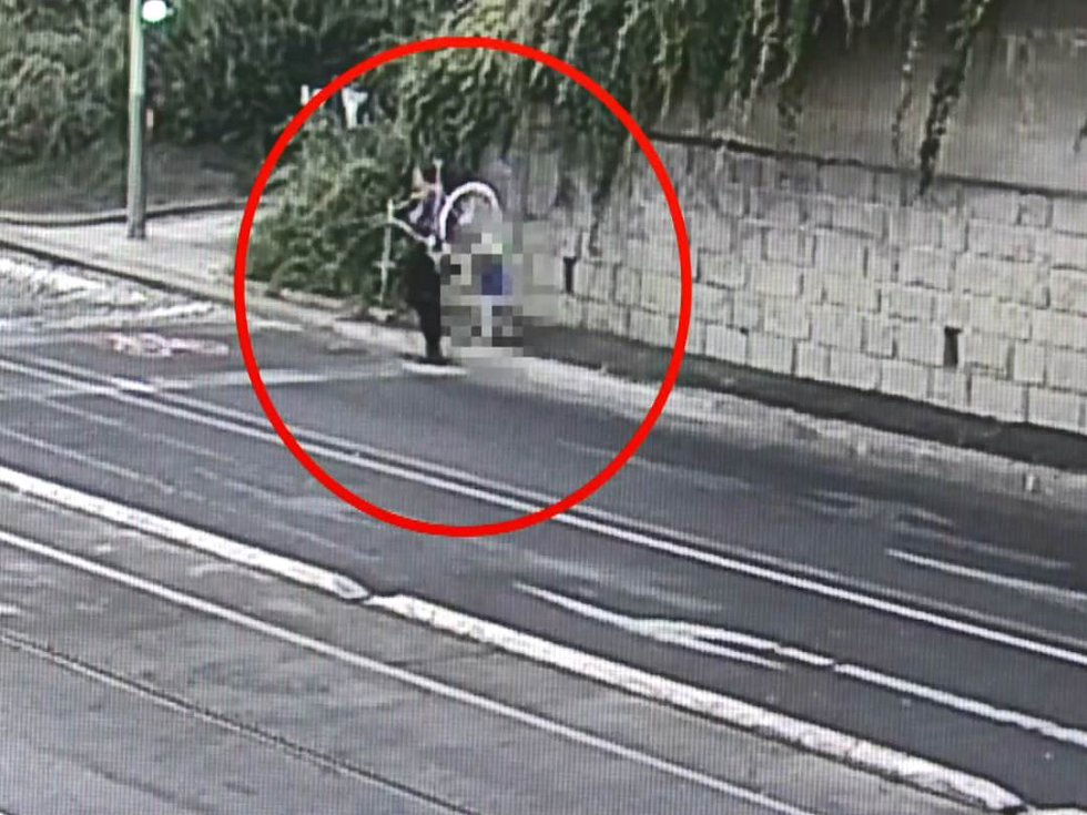 Ztracený chlapeček se díky všímavému kolemjdoucímu a strážníkům dostal během chvíle zpět ke své matce.