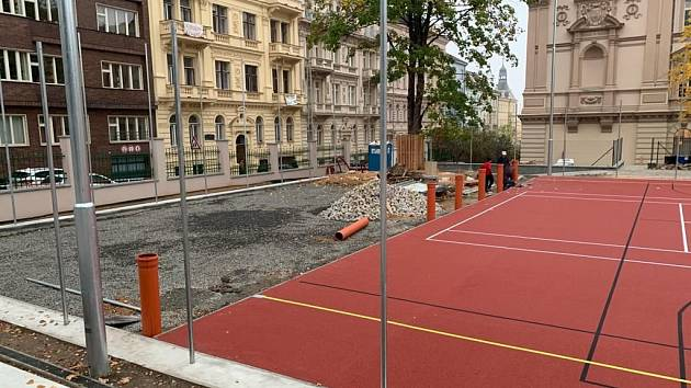 Praha 2 přistoupila před zprovozněním multifunkčního hřiště k odbornému ošetření javoru.