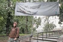 Praha 7 zahájila novou kampaň, kterou míří na neukázněné pejskaře, kteří neuklízí po svých psech. Není divu, že to radnice zkouší i agresivnějším způsobem. Úklid exkrementů ji stojí miliony korun.
