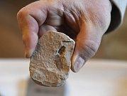 Zástupci společnosti Severočeské doly předali 14. ledna 2019 v Praze Národnímu muzeu sbírku zkamenělé třetihorní flóry a fauny, která se po desítky let nacházela při těžbě v severních Čechách.