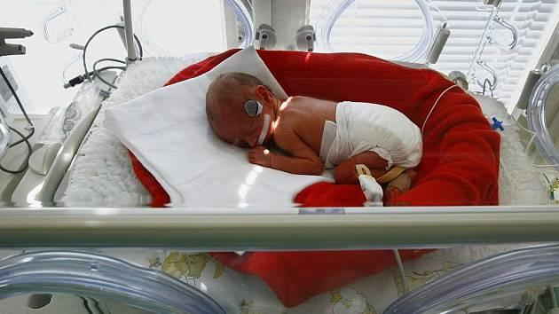 OSTROV ŽIVOTA. Díky norským fondům pomáhá v krčské nemocnici nedonošeným dětem.