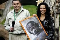 Kmotrou gorilího samečka Tatu byla Lucie Bílá.